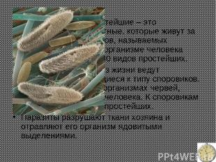 Паразитические простейшие – это одноклеточные животные, которые живут за счет др