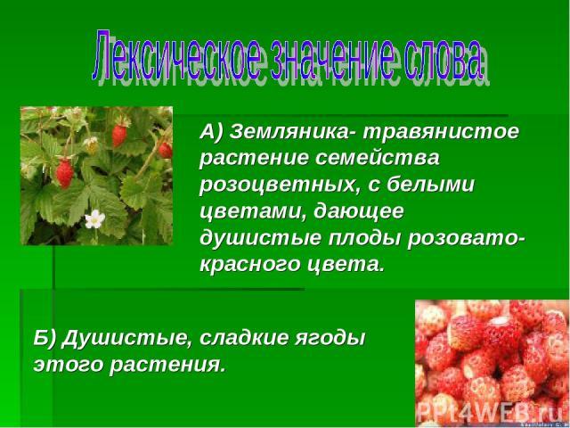 А) Земляника- травянистое растение семейства розоцветных, с белыми цветами, дающее душистые плоды розовато- красного цвета. Б) Душистые, сладкие ягоды этого растения.