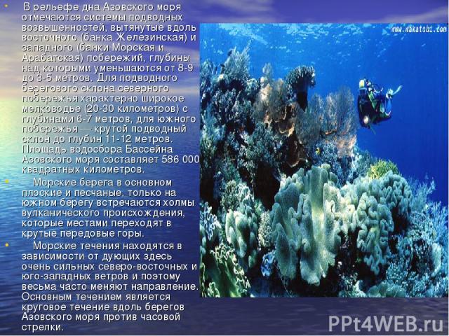 В рельефе дна Азовского моря отмечаются системы подводных возвышенностей, вытянутые вдоль восточного (банка Железинская) и западного (банки Морская и Арабатская) побережий, глубины над которыми уменьшаются от 8-9 до 3-5 метров. Для подводного берего…
