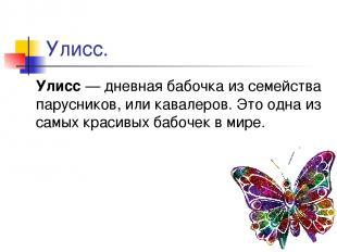 Улисс. Улисс — дневная бабочка из семейства парусников, или кавалеров. Это одна