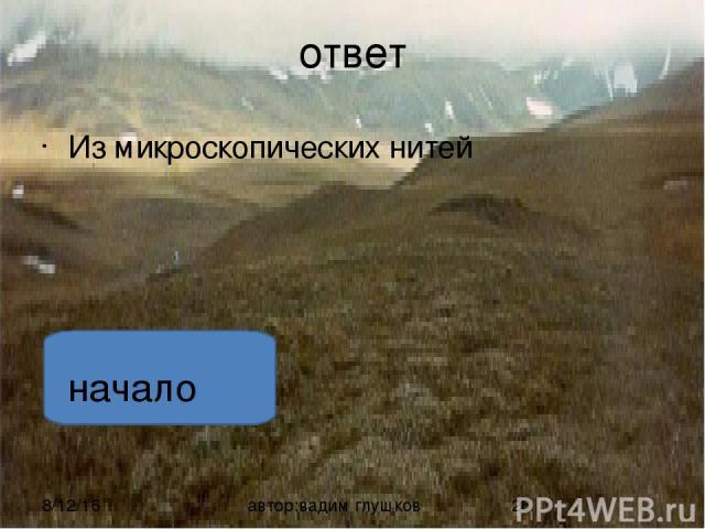 ответ Горец живородящий растет только в тундре, лесотундре и на высокогорных склонах автор:вадим глушков начало