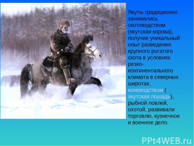 Якуты традиционно занимались скотоводством (якутская корова), получив уникальный опыт разведения крупного рогатого скота в условиях резко-континентального климата в северных широтах, коневодством (якутская лошадь), рыбной ловлей, охотой, развивали т…