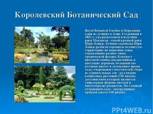 Королевский Ботанический Сад Royal Botanical Garden в Перадении один из лучших в