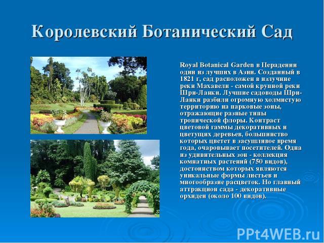 Королевский Ботанический Сад Royal Botanical Garden в Перадении один из лучших в Азии. Созданный в 1821 г, сад расположен в излучине реки Махавели - самой крупной реки Шри-Ланки. Лучшие садоводы Шри-Ланки разбили огромную холмистую территорию на пар…