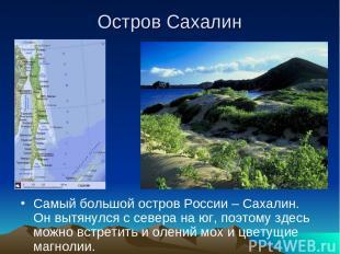Остров Сахалин Самый большой остров России – Сахалин. Он вытянулся с севера на ю