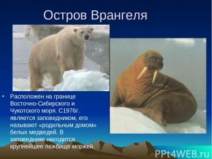 Остров Врангеля Расположен на границе Восточно-Сибирского и Чукотского моря. С19