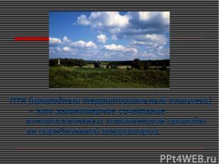 ПТК (природный территориальный комплекс) – это закономерное сочетание взаимосвяз