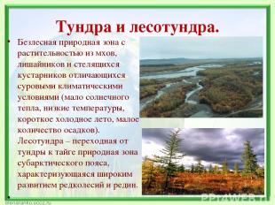 Тундра и лесотундра. Безлесная природная зона с растительностью из мхов, лишайни