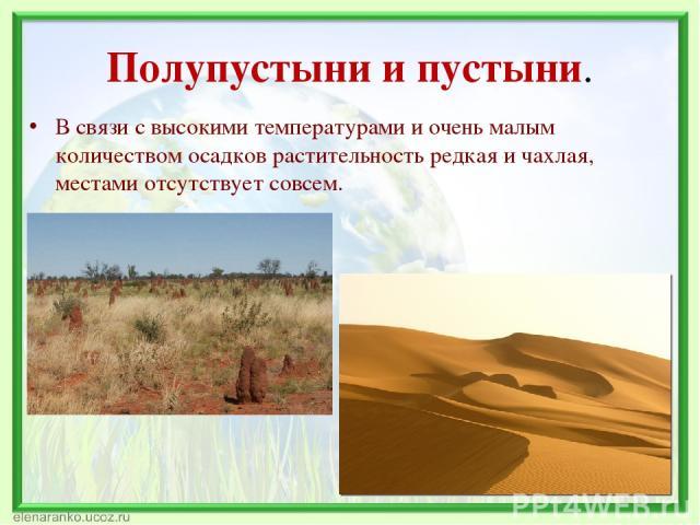 Полупустыни и пустыни. В связи с высокими температурами и очень малым количеством осадков растительность редкая и чахлая, местами отсутствует совсем.