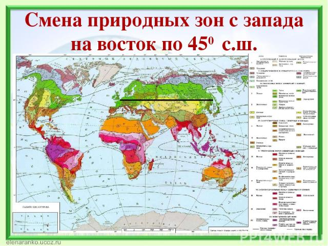 Смена природных зон с запада на восток по 450 с.ш.