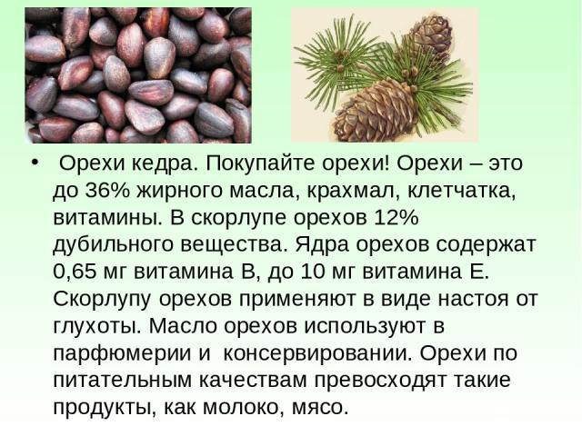 Орехи кедра. Покупайте орехи! Орехи – это до 36% жирного масла, крахмал, клетчатка, витамины. В скорлупе орехов 12% дубильного вещества. Ядра орехов содержат 0,65 мг витамина В, до 10 мг витамина Е. Скорлупу орехов применяют в виде настоя от глухоты…