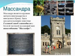 Массандра Массандра является крупным центром виноградарства и виноделия в Крыму.