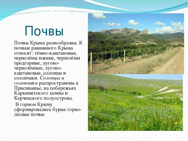 Почвы Почвы Крыма разнообразны. К почвам равнинного Крыма относят: тёмно-каштановые, чернозёмы южные, чернозёмы предгорные, лугово-чернозёмные, лугово-каштановые, солонцы и солончаки. Солонцы и солончаки распространены в Присивашье, на побережьях Ка…