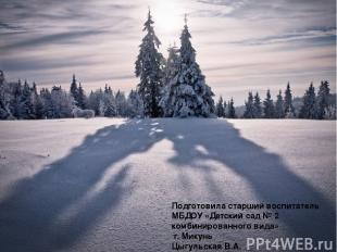 Подготовила старший воспитатель МБДОУ «Детский сад № 2 комбинированного вида» г.