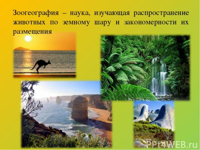 Зоогеография – наука, изучающая распространение животных по земному шару и закономерности их размещения
