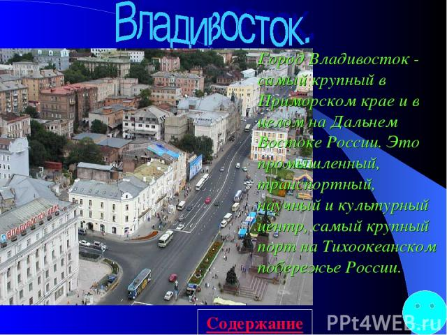 Город Владивосток - самый крупный в Приморском крае и в целом на Дальнем Востоке России. Это промышленный, транспортный, научный и культурный центр, самый крупный порт на Тихоокеанском побережье России. Содержание
