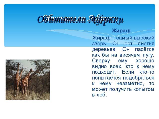 Обитатели Африки Жираф Жираф – самый высокий зверь. Он ест листья деревьев. Он пасётся как бы на висячем лугу. Сверху ему хорошо видно всех, кто к нему подходит. Если кто-то попытается подобраться к нему незаметно, то может получить копытом в лоб. О…