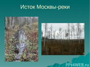 Исток Москвы-реки