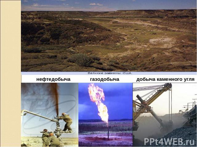 нефтедобыча газодобыча добыча каменного угля