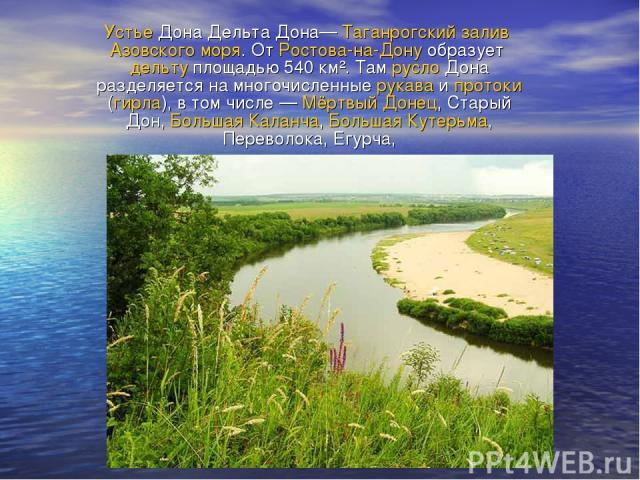 Устье Дона Дельта Дона— Таганрогский залив Азовского моря. От Ростова-на-Дону образует дельту площадью 540 км². Там русло Дона разделяется на многочисленные рукава и протоки (гирла), в том числе— Мёртвый Донец, Старый Дон, Большая Каланча, Большая …
