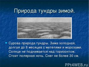 Природа тундры зимой. Сурова природа тундры. Зима холодная, долгая до 8 месяцев