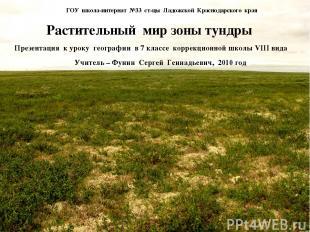 ГОУ школа-интернат №33 ст-цы Ладожской Краснодарского края Растительный мир зоны