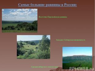 Самые большие равнины в России: Восточно-Европейская равнина Западно-Сибирская н