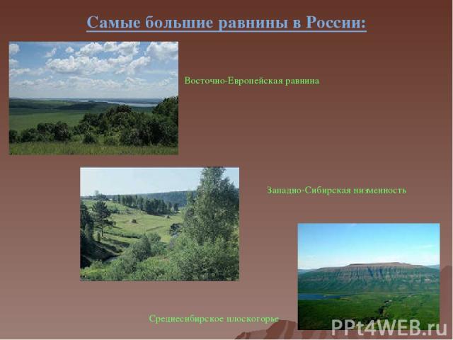 Самые большие равнины в России: Восточно-Европейская равнина Западно-Сибирская низменность Среднесибирское плоскогорье