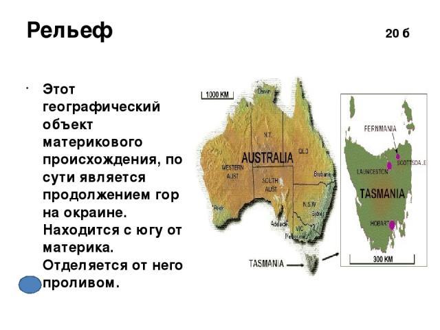 Р и Ж 50 б Что объединяет этих животных? Какое растение является символом Австралии? сумчатые эвкалиптт
