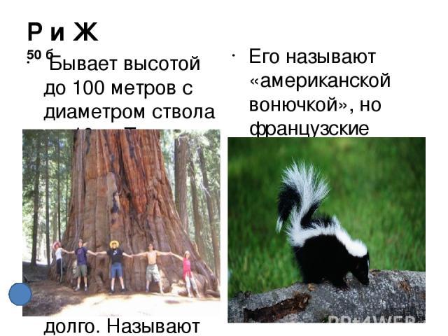 Используемая литература. Автор использовал фотографии из поисковой системы Yandex. http://annaritamaestra.altervista.org/joomla/visual/data/images1/32.jpg http://cikavo.com/images2/2009/06/21/img_1344859169.gif http://im1-tub-ru.yandex.net/i?id=e739…