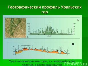 Географический профиль Уральских гор Урал –ассиметричные горы, т.к западный скло