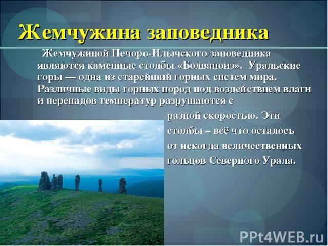 Жемчужина заповедника Жемчужиной Печоро-Илычского заповедника являются каменные столбы «Болваноиз». Уральские горы — одна из старейший горных систем мира. Различные виды горных пород под воздействием влаги и перепадов температур разрушаются с разно…