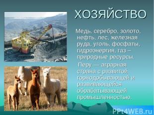 ХОЗЯЙСТВО Медь, серебро, золото, нефть, лес, железная руда, уголь, фосфаты, гидр
