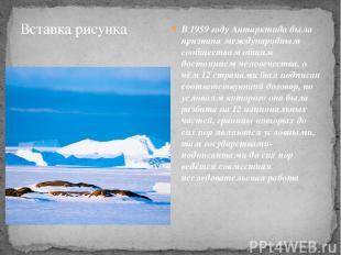 В 1959 году Антарктида была признана международным сообществом общим достоянием