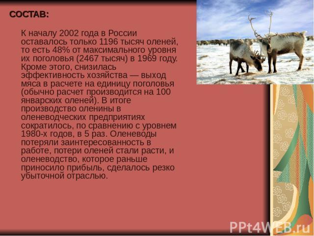 СОСТАВ: К началу 2002 года в России оставалось только 1196 тысяч оленей, то есть 48% от максимального уровня их поголовья (2467 тысяч) в 1969 году. Кроме этого, снизилась эффективность хозяйства — выход мяса в расчете на единицу поголовья (обычно ра…