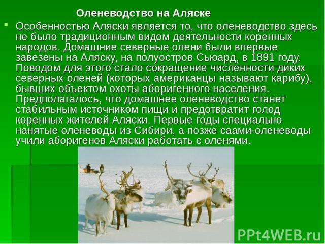 Оленеводство на Аляске Особенностью Аляски является то, что оленеводство здесь не было традиционным видом деятельности коренных народов. Домашние северные олени были впервые завезены на Аляску, на полуостров Сьюард, в 1891 году. Поводом для этого ст…