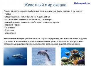 Животный мир океана Океан является средой обитания для множества форм жизни; в и