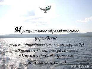 Муниципальное образовательное учреждение средняя общеобразовательная школа №1 г.