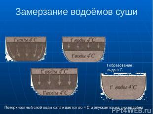 Замерзание водоёмов суши t образование льда 0 С Поверхностный слой воды охлаждае