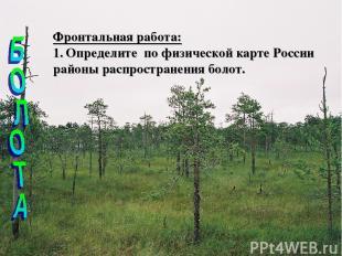 Фронтальная работа: Определите по физической карте России районы распространения