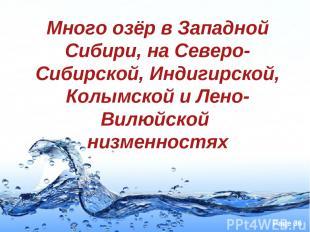 Много озёр в Западной Сибири, на Северо-Сибирской, Индигирской, Колымской и Лено