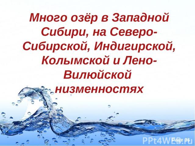 Много озёр в Западной Сибири, на Северо-Сибирской, Индигирской, Колымской и Лено-Вилюйской низменностях Page *