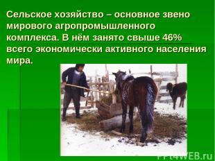 Сельское хозяйство – основное звено мирового агропромышленного комплекса. В нём