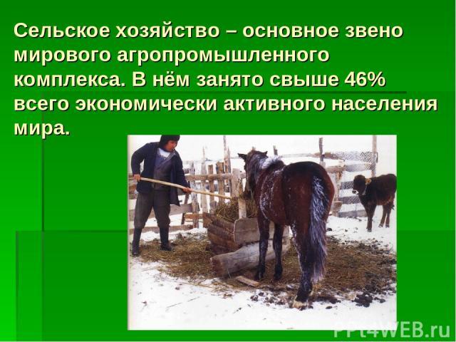 Сельское хозяйство – основное звено мирового агропромышленного комплекса. В нём занято свыше 46% всего экономически активного населения мира.