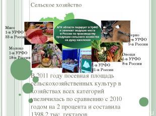 Сельское хозяйство В 2011 году посевная площадь сельскохозяйственных культур в х