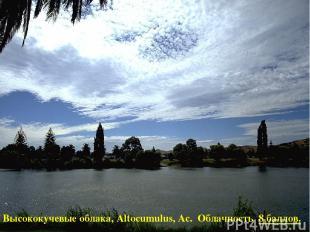 Высококучевые облака, Altocumulus, Ac. Облачность 8 баллов.