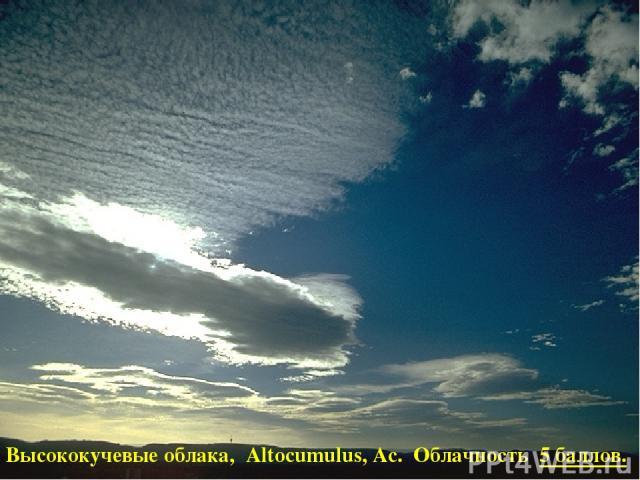 Высококучевые облака, Altocumulus, Ac. Облачность 5 баллов.