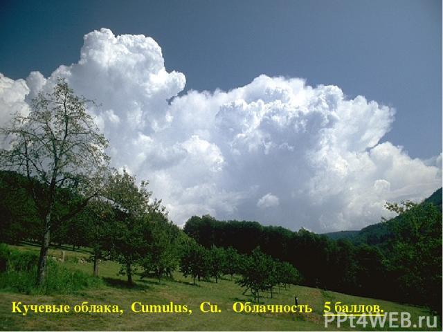 Кучевые облака, Cumulus, Cu. Облачность 5 баллов.