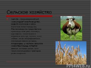 Сельское хозяйство Тип с/х – среднеевропейский. Преобладает животноводство, разв