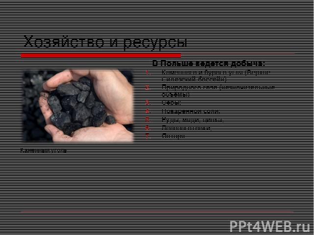 Хозяйство и ресурсы В Польше ведется добыча: Каменного и бурого угля (Верхне-Силезский бассейн) Природного газа (незначительные объёмы) Серы; Поваренной соли; Руды, меди, цинка; Лесозаготовки; Янтаря. Каменный уголь